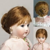 "Sylvie Mohair Wig For 8"" French Fashion Dolls"